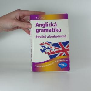 náhled knihy - Anglická gramatika : stručně a bezbolestně