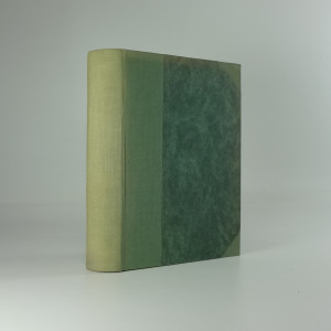 náhled knihy - Anabase: román z války