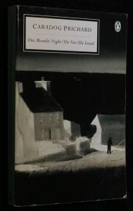 náhled knihy - One Moonlit Night/Un Nos Ola Leuad