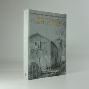 náhled knihy - Antología del cuento chileno
