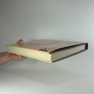 antikvární kniha Literární toulky Prahou : [pro čtenáře od 12 let], 1988