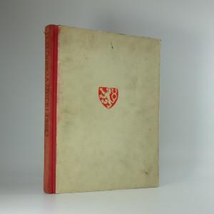 náhled knihy - České dějiny v obrazech : vývoj historického námětu ve výtvarném umění