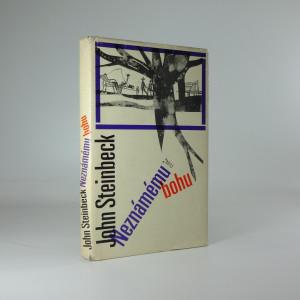 náhled knihy - Neznámému bohu