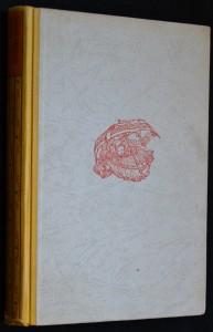 náhled knihy - Zázračný deštník sv. Petra