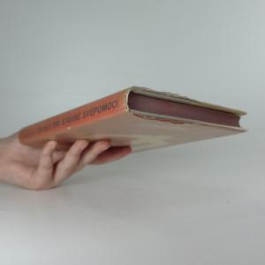 antikvární kniha Chyby při stavbě svépomocí - jejich příčiny a odstranění, 1975