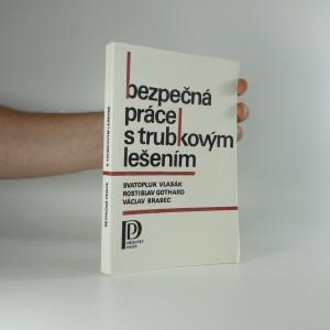 náhled knihy - Bezpečná práce s trubkovým lešením