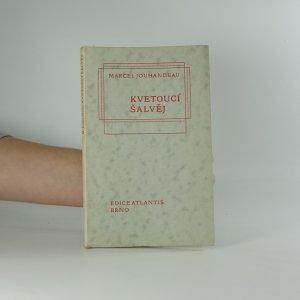 náhled knihy - Kvetoucí šalvěj : vzpomínky z dětství
