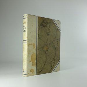 náhled knihy - Ta, která pláče (Naše paní La Saletteská)