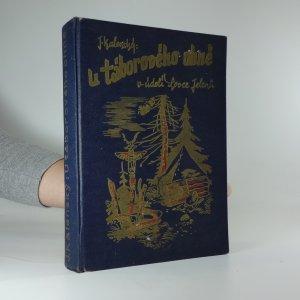 náhled knihy - U táborového ohně