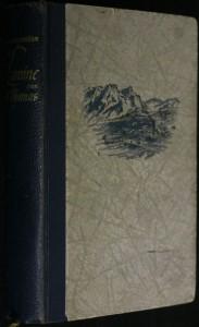náhled knihy - Die Lawine von St. Thomas