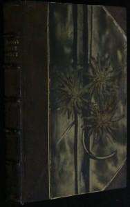 náhled knihy - Drobné povídky a obrázky
