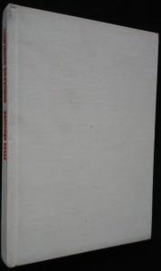 náhled knihy - Bumerang rychlosti, aneb, Auto versus životní prostředí