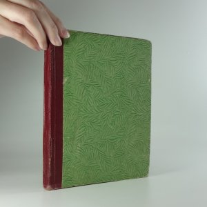 náhled knihy - Princezna z Větrné rokle