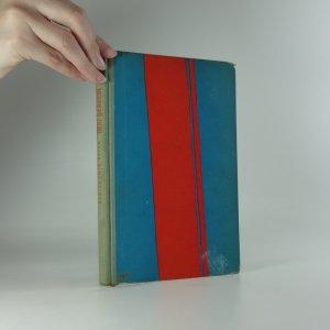 náhled knihy - Můj generál - Neukázněná zpráva štábního rotmistra