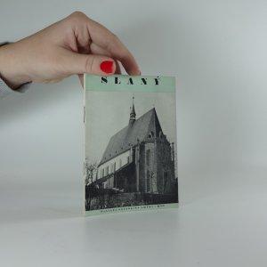 náhled knihy - Slaný