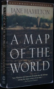 náhled knihy - A map of the world