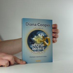 náhled knihy - Vzestup do páté dimenze : kráčející duchovní mistr