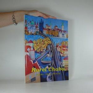 náhled knihy - Praha, Prag, Prague