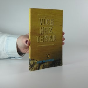 náhled knihy - Více než tesař