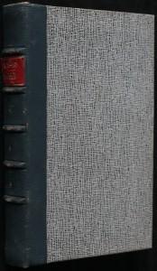 náhled knihy - Svědek : román
