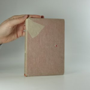 náhled knihy - Skautská princezna : dívčí románek