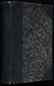 náhled knihy - Veliké dobrodružství : detektivní román