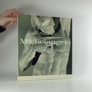 náhled knihy - Michelangelo