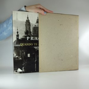 náhled knihy - Praga, quando te aspiciam... (fotopublikace)