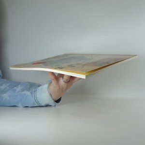 antikvární kniha Orientální kuchyně. Rychlé a jednoduché orientální pokrmy pro každou příležitost, 2000
