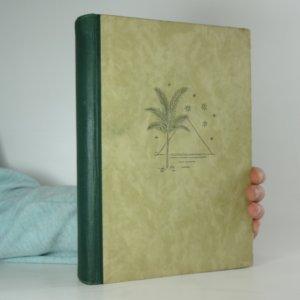 náhled knihy - Inšallah