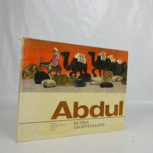 náhled knihy - Abdul tvůj kamarád z Afghánistánu. Pro malé čtenáře