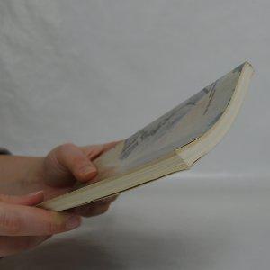 antikvární kniha Proluky, 1991