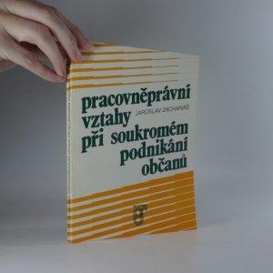 náhled knihy - Pracovněprávní vztahy při soukromém podnikání občanů