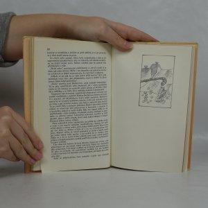 antikvární kniha Útěk do Budína, 1982