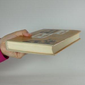 antikvární kniha Co je co v Praze, 1989