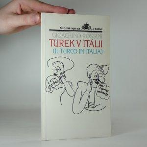náhled knihy - Turek v Itálii