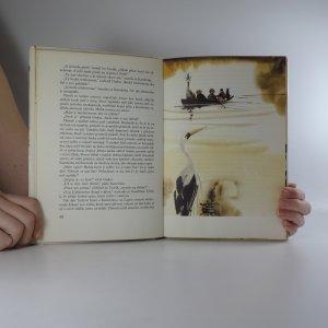 antikvární kniha Divoký koník Ryn, 1983
