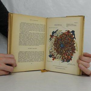 antikvární kniha Poznáváme člověka, 1953