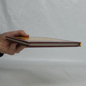 antikvární kniha Henna. Body art, 2000