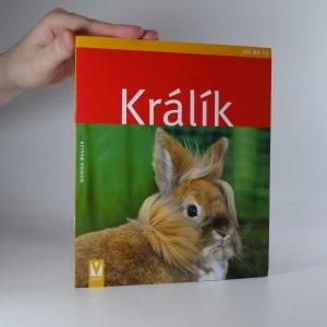 náhled knihy - Králík