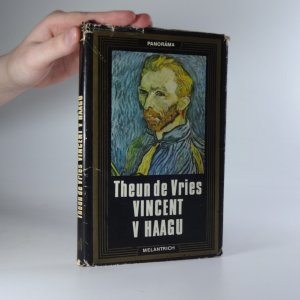 náhled knihy - Vincent v Haagu