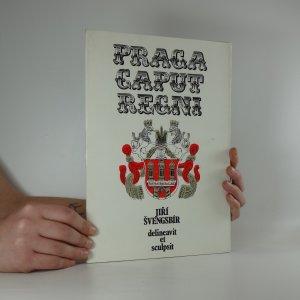 náhled knihy - Praga caput regni