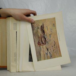 antikvární kniha Velký Brehmův život zvířat (nekompletní), 1937-1941