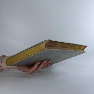 antikvární kniha Indický princ. Pád Cařihradu. díl I., neuveden