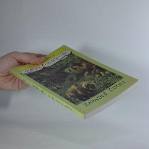 antikvární kniha Děti jeskyň.  Díl 1. Zapadlé údolí, 1992
