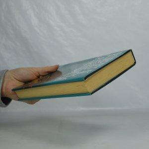 antikvární kniha Nejvyšší trest, 2001