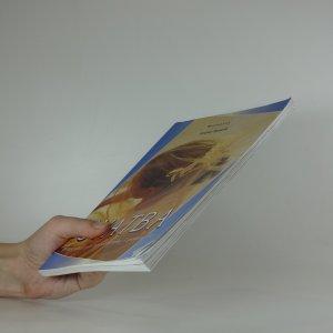 antikvární kniha Svatba. Průvodce pro začátečníky i pokročilé, 2001