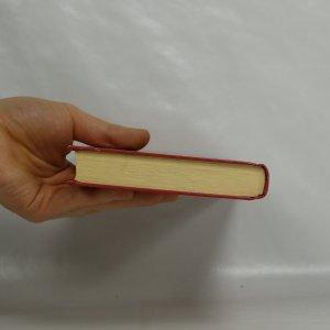 antikvární kniha Puč ve Vatikánu, 2004
