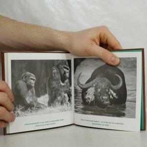antikvární kniha Drahý tatínku : taťka - kamarád a hrdina, 2005