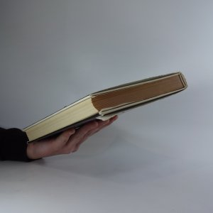 antikvární kniha Malá světová obrazárna, 1971